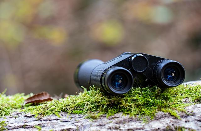 cazar en espana